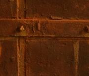 GIDP-Fux Rust Detail