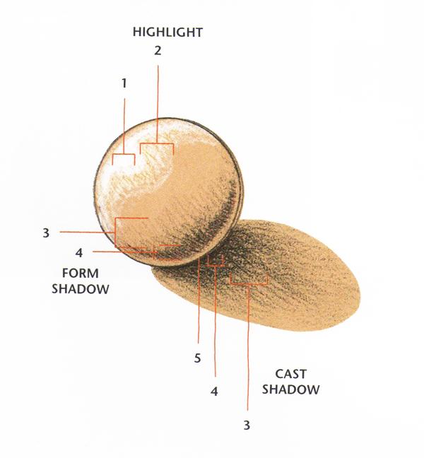 Pfinkelstein-Elements-of-light-&-shadow-02
