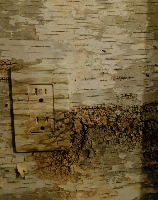 wallpaper-match-plate-1-1